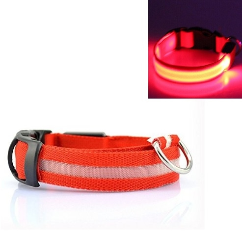 https://www.abc-led.nl/data/upload/Shop/images/led-halsband-rood-1-0.jpg